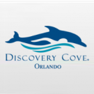Discovery Cove Ultimate SEM NADO com Golfinho + SeaWorld Orlando + Aquatica Orlando + Busch Gardens Tampa (3 anos ou mais)